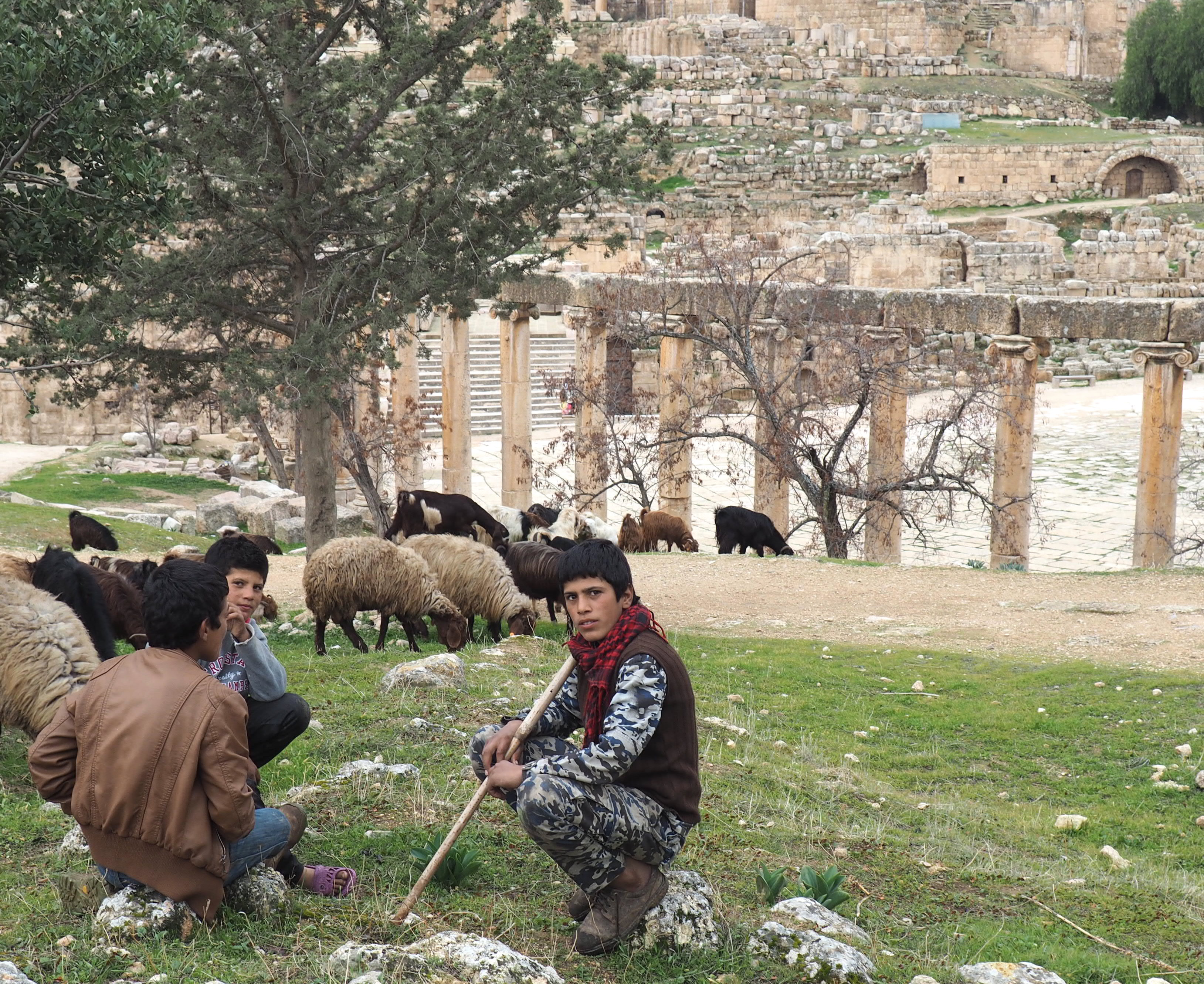 Young Shepherds look over their goats in Jerash, Jordan