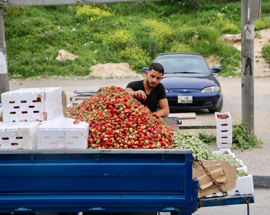 Jebel Amman, Jebel Hussein, Jebel al-Farawla (Strawberries)