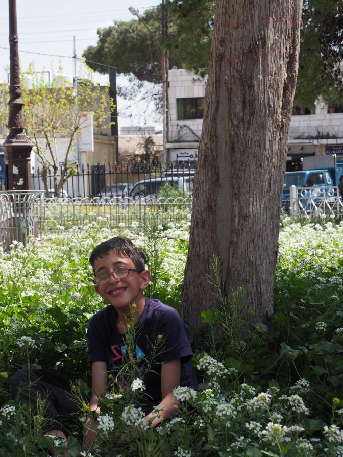 Amman Spring 2019